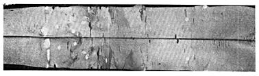 отличие большинства дефекты проката флокены фото дом